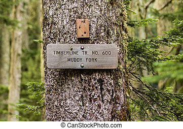 Sign post for trail 600 Muddy Fork in the Mt Hood National...