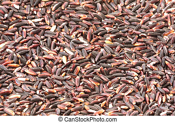 Black Glutinous Rice Isolated - Isolated image of Black...
