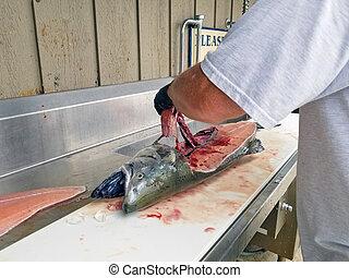 man filleting king salmon
