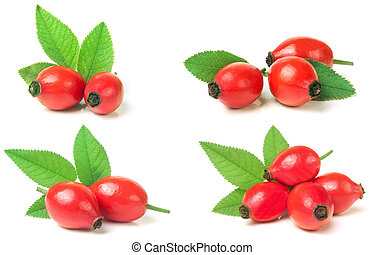 rose hip berry with leaf isolated on white background. Set...