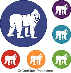 Mandrill monkey icons set in flat circle red, blue and green...