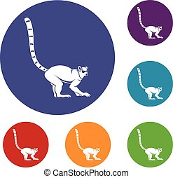 Lemur monkey icons set in flat circle red, blue and green...