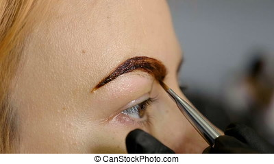 Makeup artist applies paint henna on trimmed eyebrows. Close...
