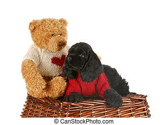 best friends - cocker spaniel bear and teddy bear wearing...