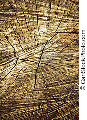 Cross shaped crack in old wood - abstract background or...