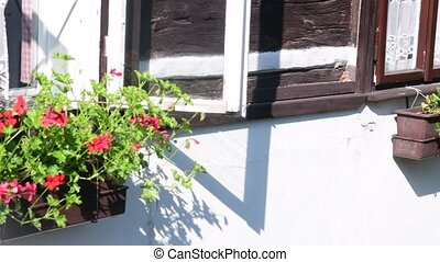 Village garden and rural house. Timbered house. Log cabin and flowered garden