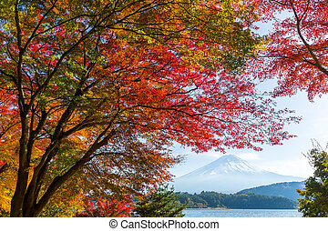 Kawaguchi Lake in the autumn season