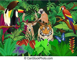 dziki, zwierzę