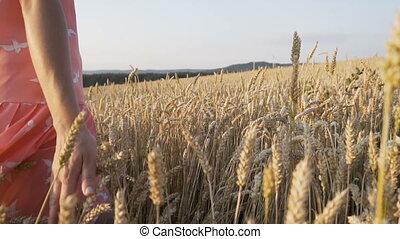 Woman on Wheat Field - Woman wearing red scirt walking...