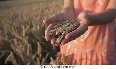 The Wheat Ears - Woman wearing red scirt holding wheat ears...