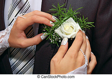hands fiancee on the buttonhole of groom - a hands fiancee...