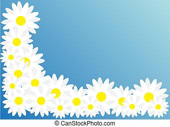 Spring Frame / Background