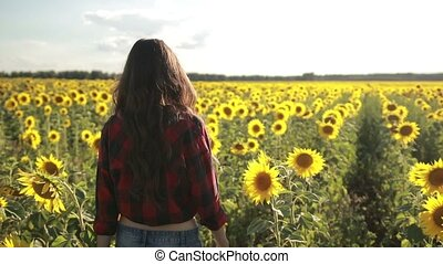 Beautiful lady walking in summer sunflower field - Elegant...