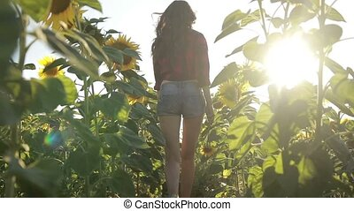 Sexy young woman running through sunflower field - Sexy...
