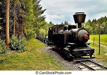 Ciernohronska Railway in village Cierny Balog, Slovakia....