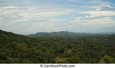 Mountains with tropical forest. Philippines Bohol island. -...