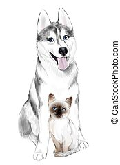 White And Gray Adult Siberian Husky Dog and Thai Kitten are...