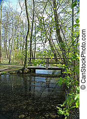 Landscape in the Spree woods Germany - Landscape in the...