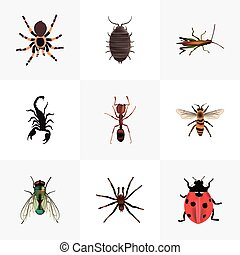 Realistic Housefly, Dor, Emmet And Other Vector Elements. Set Of Insect Realistic Symbols Also Includes Ladybird, Beetle, Jewel Objects.