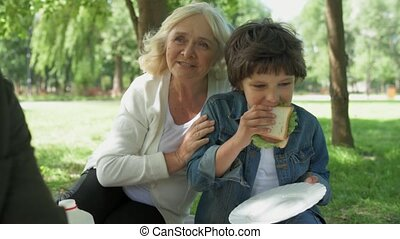 Hungry little boy eating sandwich while having a picnic -...