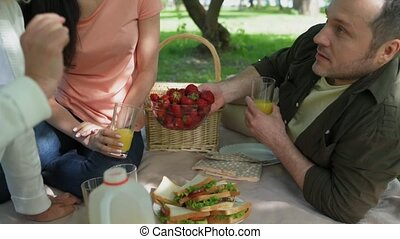Pleasant family having a picnic in the park
