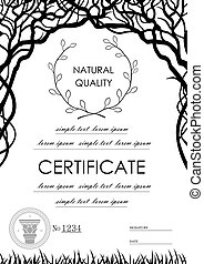 Background for the certificate