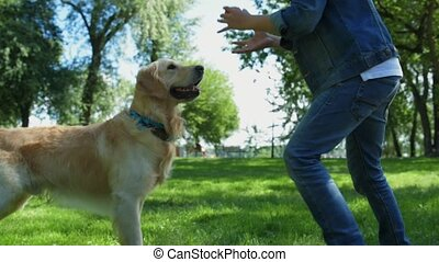 Little boy playing with his bid purebred dog - Best friends....