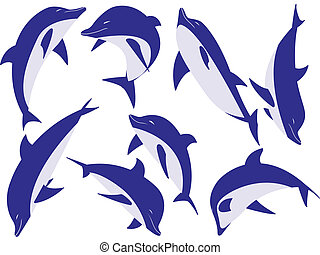 animal dolphins - Sea animal dolphins in a vector isolated...
