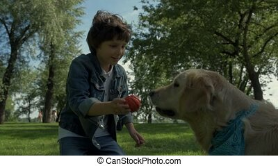 Overjoyed little boy playing with his purebred dog - True...