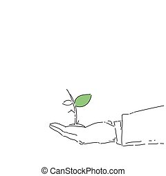Business Man Hand Holding Plant Environmental Protection Growth Concept