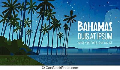 Bahamans Sea Shore Beach After Sunset Beautiful Seaside...