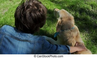 Top view of a purebred dog playing in the park - Joy and...