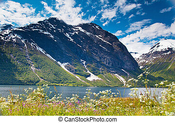 norwegian mountain lake landscape Eikesdalen