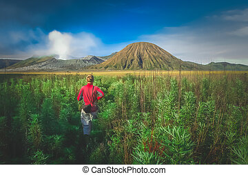 Trekking towards Gunung Bromo - Female tourist walking...