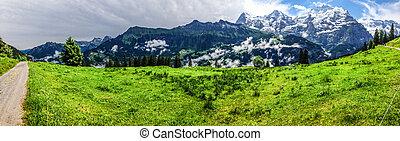 esterno, alpi, famiglia, cantone, meglio, Jungfrau,...