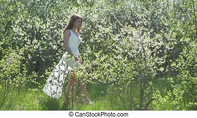 Girl and blooming cherry. The girl is standing in lifestyle...
