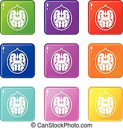 Walnut set 9 - Walnut icons of 9 color set isolated vector...