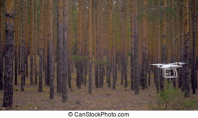 A slow motion of quadrocopter flying among trees. Slow...
