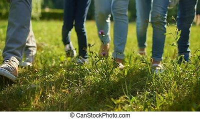 Close up of adult and children legs promenading on grass -...