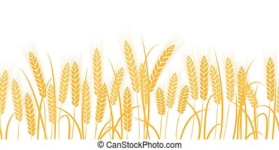 Vector silhouette of wheat. Wheat in the field on a white...
