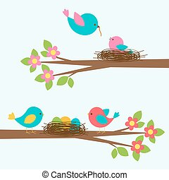 Two cute families of birds on blooming branch tree