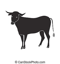 black bull vector illustration
