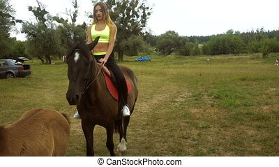 cutie girl rides on horseback at daytime - cutie young girl...