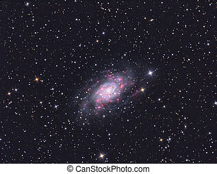 Galaxy NGC 2403 - imaged with a telescope and a scientific...