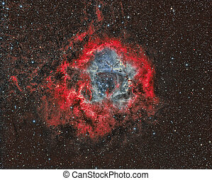 Rosette Nebula - imaged with a telescope and a scientific...