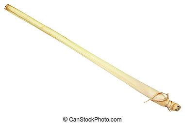 Lemongrass Stalk - Single Lemongrass Stalk over White.