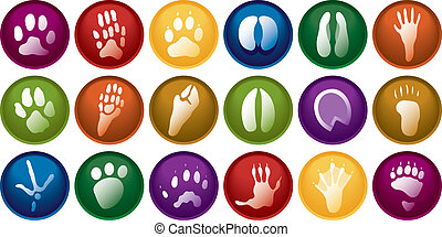 Animal tracks buttons - Eighteen various animal track...