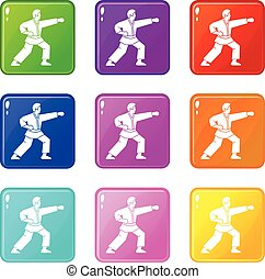Aikido fighter set 9 - Aikido fighter icons of 9 color set...