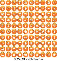 100 fruit icons set orange