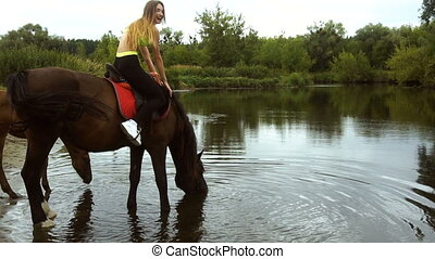 beautiful big horse with rider drinks water by the Lake